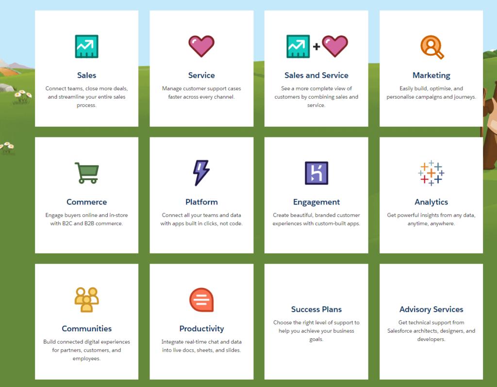 Most Salesforce applications run on the cloud based Customer 360 platform