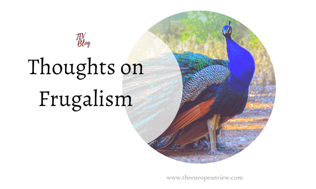 Frugalism TEV Blog